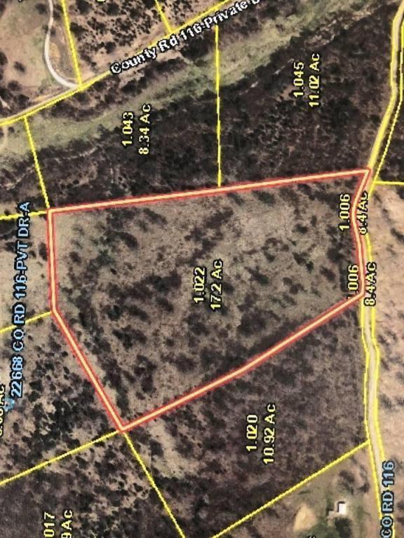Countyroad 116, Macomb, MO 65702 (MLS #60109194) :: Greater Springfield, REALTORS