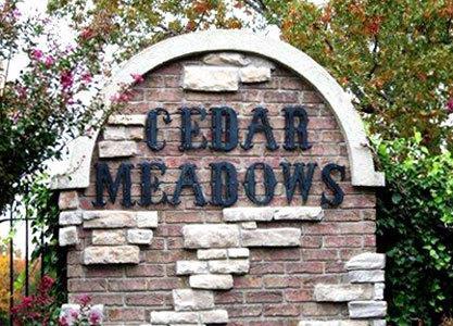 151 Acadia Court, Branson, MO 65616 (MLS #60120421) :: Team Real Estate - Springfield