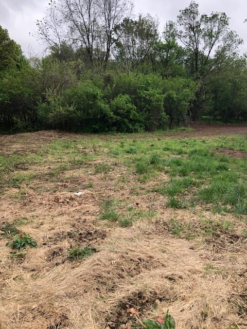 Lot 11 Radcliff Drive, Neosho, MO 64850 (MLS #60134976) :: The Real Estate Riders