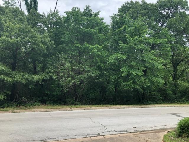 Lot 20 Timber Ridge, Neosho, MO 64850 (MLS #60136177) :: Sue Carter Real Estate Group