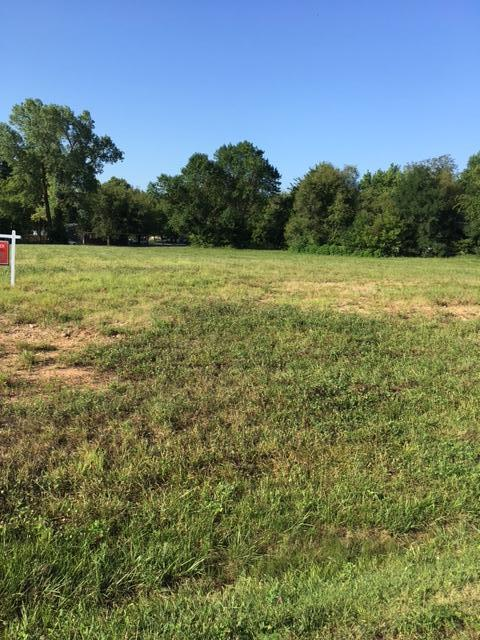Lot #27 E Natalie Ct, Joplin, MO 64801 (MLS #60137255) :: Sue Carter Real Estate Group