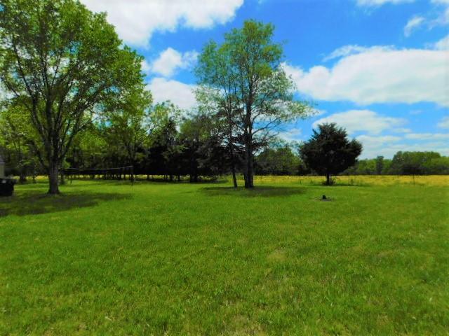 3034 V Highway, Hartville, MO 65667 (MLS #60141600) :: Sue Carter Real Estate Group