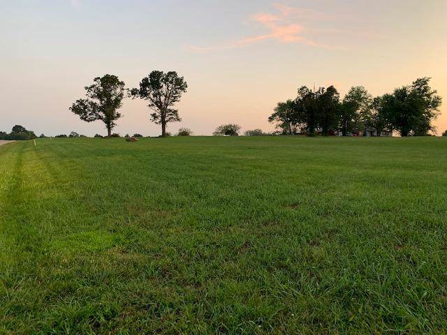 Lot 5 Twin Pine Estates, Billings, MO 65610 (MLS #60146742) :: Team Real Estate - Springfield