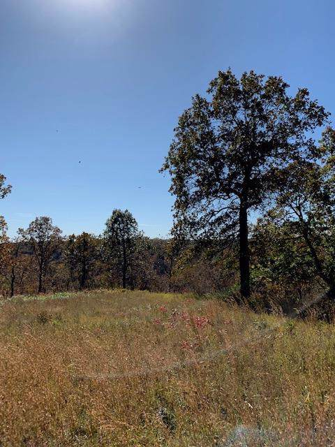 Lot 25-A Palamino Dr., Highlandville, MO 65669 (MLS #60147348) :: Sue Carter Real Estate Group