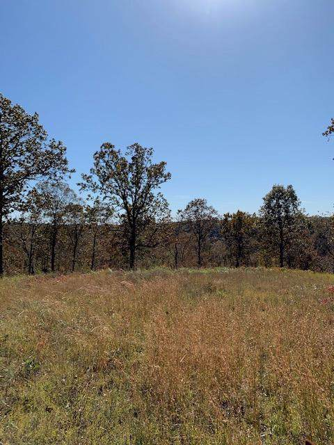 Lot 26-A Palamino, Highlandville, MO 65669 (MLS #60147352) :: Sue Carter Real Estate Group