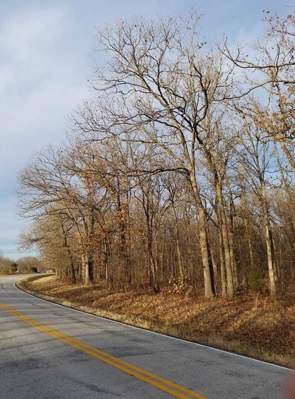Xxx Highway H, Neosho, MO 64850 (MLS #60152831) :: Sue Carter Real Estate Group