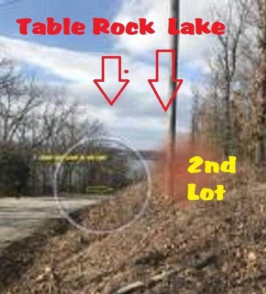 230 Lakecrest Drive, Ridgedale, MO 65739 (MLS #60155822) :: The Real Estate Riders