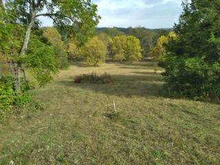 2133 State Highway Kk, Fordland, MO 65652 (MLS #60175151) :: Clay & Clay Real Estate Team