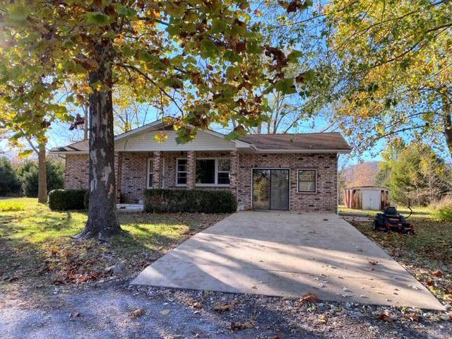 24031 Canary Drive, Golden, MO 65658 (MLS #60177627) :: Evan's Group LLC