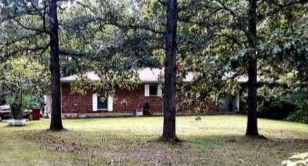 12279 Farm Road 1215, Jenkins, MO 65605 (MLS #60184248) :: Winans - Lee Team | Keller Williams Tri-Lakes
