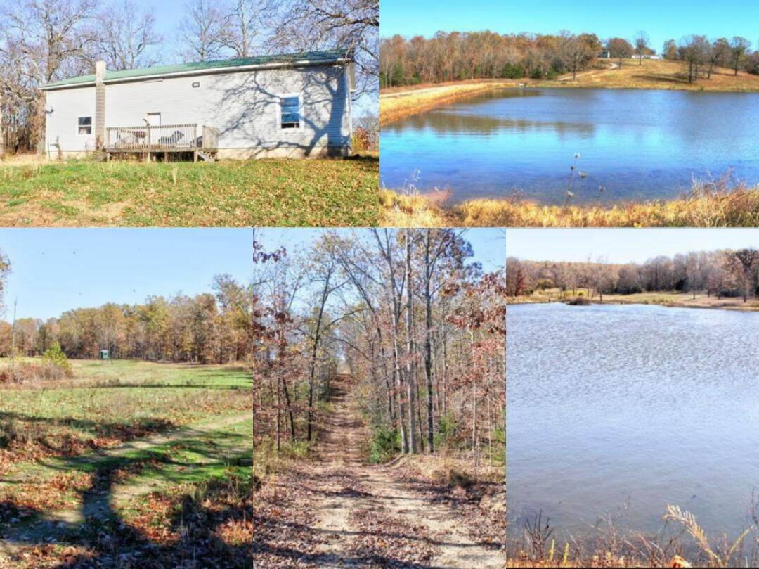 10781 State Hwy Mm - Photo 1