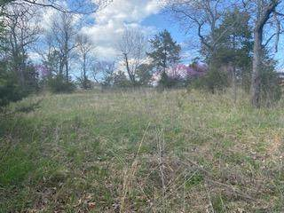 000 Lot11a Corewood Lane, Reeds Spring, MO 65737 (MLS #60187070) :: Team Real Estate - Springfield