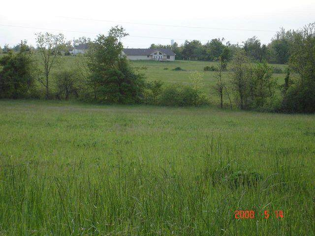 5345 S 213th Road, Pleasant Hope, MO 65725 (MLS #60196092) :: Sue Carter Real Estate Group