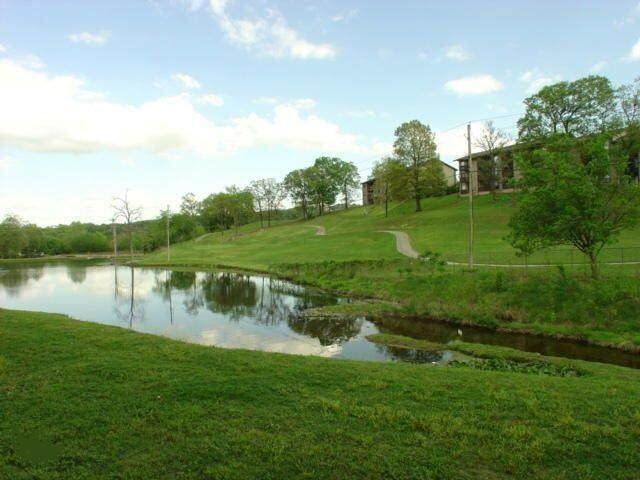 31 Golfshores Drive - Photo 1