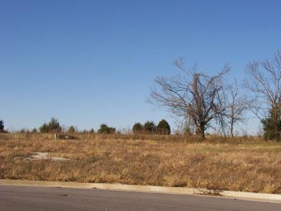295 N Kellen Street #1, Fair Grove, MO 65648 (MLS #10726592) :: Good Life Realty of Missouri