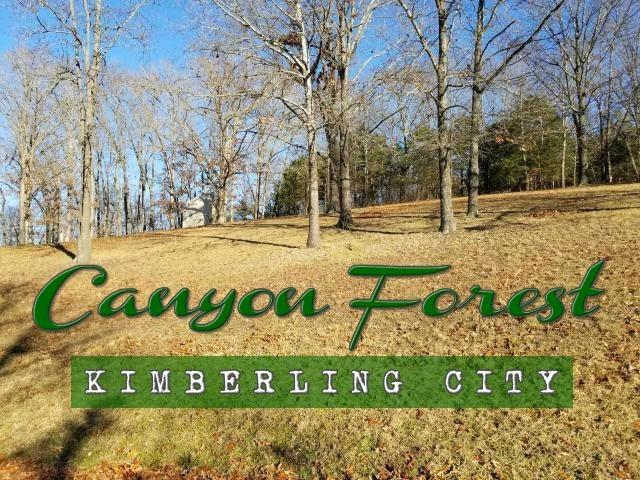 47 Canyon Forest East, Kimberling City, MO 65686 (MLS #60125618) :: Sue Carter Real Estate Group
