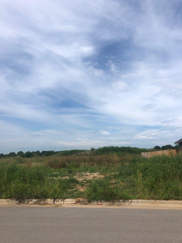 Lot 519 River Pointe Phase 1, Ozark, MO 65721 (MLS #60129080) :: Massengale Group