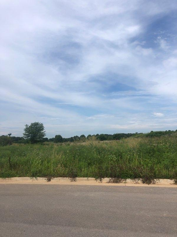 Lot 520 River Pointe Phase 1, Ozark, MO 65721 (MLS #60129082) :: Massengale Group