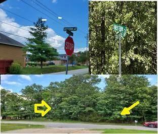 206 Western Avenue, Branson, MO 65616 (MLS #60169187) :: The Real Estate Riders