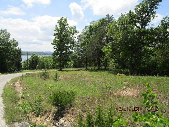 Lot 1 Velma Road, Protem, MO 65733 (MLS #60155970) :: Tucker Real Estate Group | EXP Realty