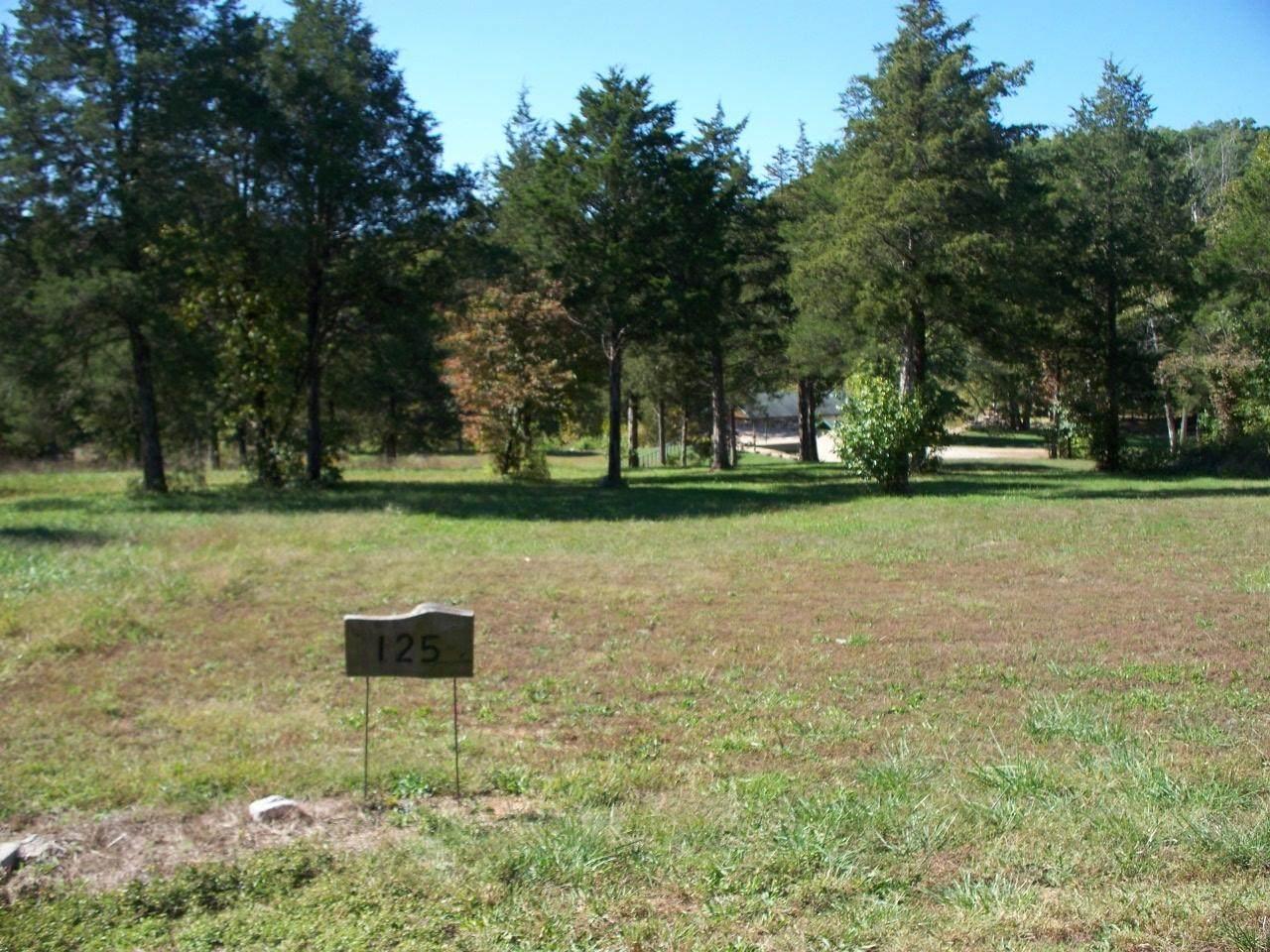 Lot 125 Seven Pines Drive - Photo 1