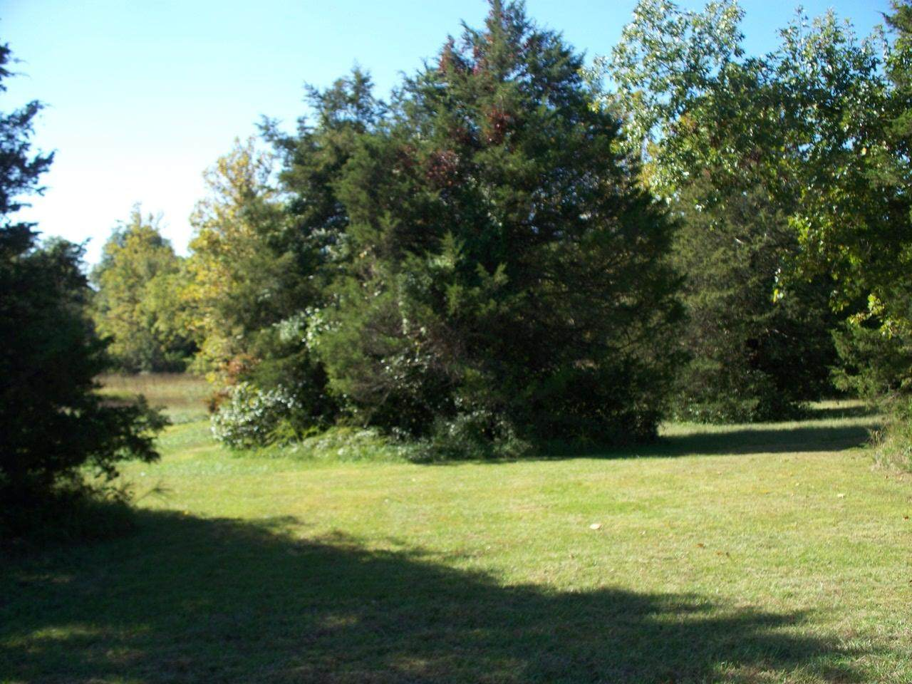 Lot 116 Seven Pines Drive - Photo 1