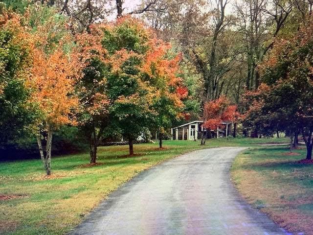 2029 Horse Haven Trail, Nixa, MO 65714 (MLS #60168059) :: Team Real Estate - Springfield