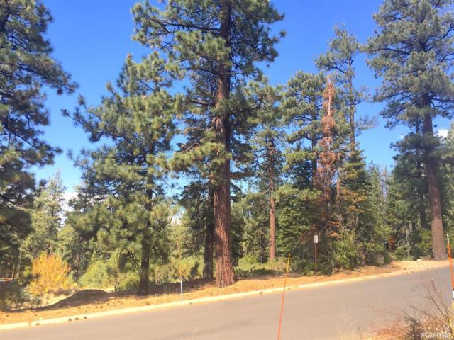 0 Saddle Road, South Lake Tahoe, CA 96150 (MLS #126662) :: Sierra Sotheby's International Realty