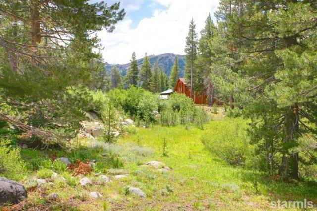 815 Columbine Circle #517, Kirkwood, CA  (MLS #127124) :: Kirkwood Mountain Realty
