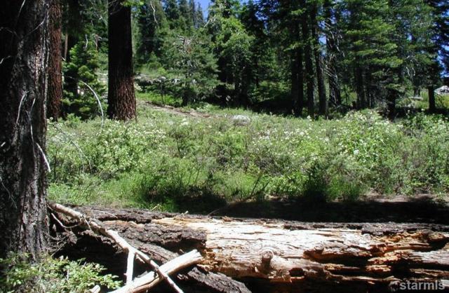 0 Highway 50, Phillips, CA 96150 (MLS #127855) :: Sierra Sotheby's International Realty