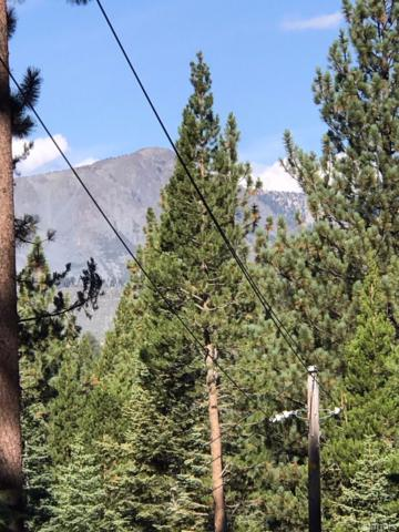 1428 Skyline Drive, South Lake Tahoe, CA  (MLS #128300) :: Sierra Sotheby's International Realty