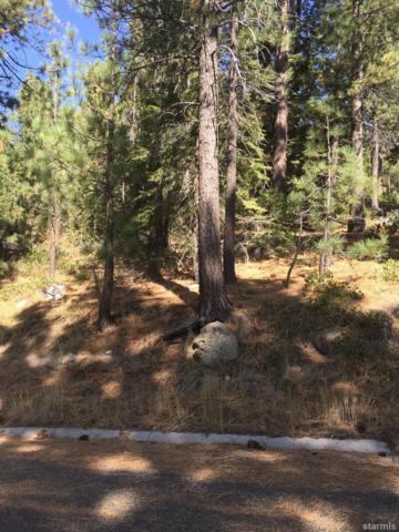 839 Muskwaki Drive, South Lake Tahoe, CA 96150 (MLS #128424) :: Sierra Sotheby's International Realty