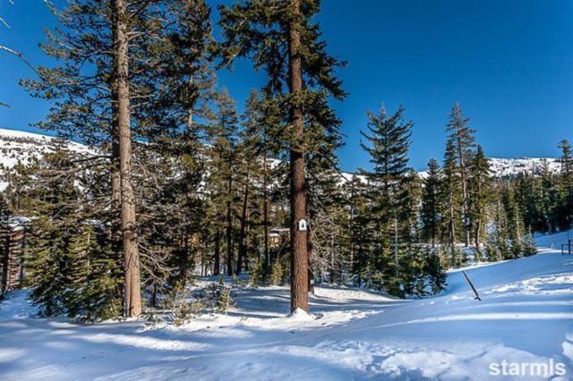 0 Palisades Drive #4, Kirkwood, CA 95646 (MLS #128477) :: Kirkwood Mountain Realty