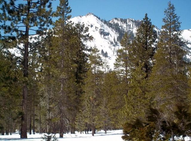 2419 Blitzen Road, Meyers, CA 96150 (MLS #128482) :: Sierra Sotheby's International Realty