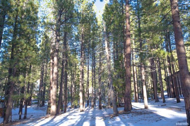 1506 Bonita Road, South Lake Tahoe, CA 96150 (MLS #128547) :: Sierra Sotheby's International Realty