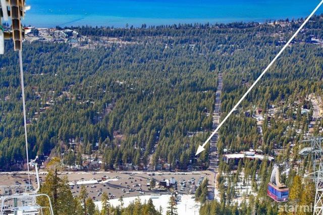 3861 Saddle Road #13, South Lake Tahoe, CA 96150 (MLS #128659) :: Sierra Sotheby's International Realty