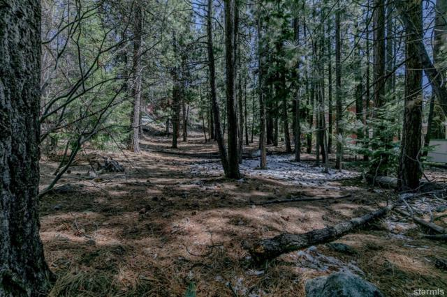 1442 Price Road, South Lake Tahoe, CA 96150 (MLS #129030) :: Sierra Sotheby's International Realty