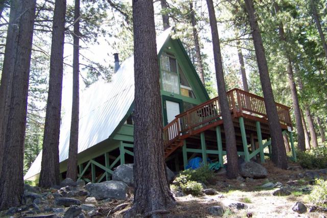 968 Emigrant Road, South Lake Tahoe, CA 96150 (MLS #129109) :: Sierra Sotheby's International Realty