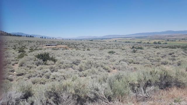 5 Hawkins Peak Road, Woodfords, CA 96120 (MLS #129627) :: Sierra Sotheby's International Realty