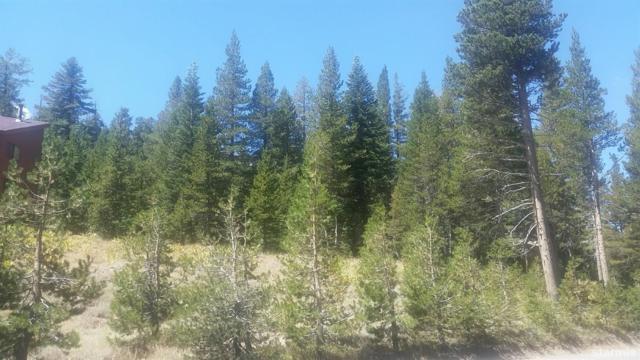 34030 Fremont Rd. #100, Kirkwood, CA 95646 (MLS #129788) :: Kirkwood Mountain Realty