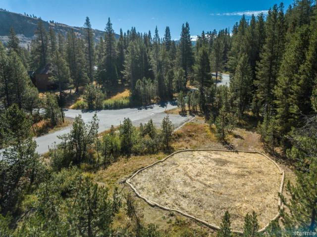 34197 Fremont Road, Kirkwood, CA  (MLS #129927) :: Kirkwood Mountain Realty