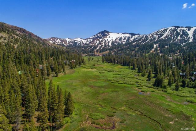 264 Larkspur Drive #309, Kirkwood, CA 95646 (MLS #130136) :: Kirkwood Mountain Realty