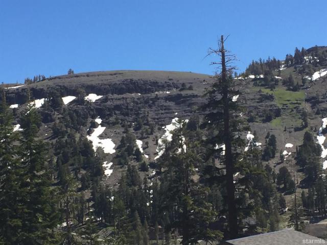14 Palisades Drive, Kirkwood, CA 95646 (MLS #130517) :: Kirkwood Mountain Realty