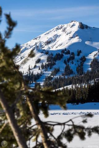 491 E Meadows Drive, Kirkwood, CA 95646 (MLS #131699) :: Kirkwood Mountain Realty