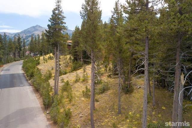 34030 Fremont Rd. #100, Kirkwood, CA 95646 (MLS #131763) :: Kirkwood Mountain Realty