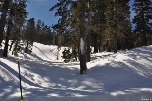 13 Palisades Drive, Kirkwood, CA 95646 (MLS #132526) :: Kirkwood Mountain Realty
