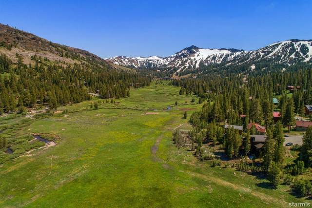 33889 Fremont Road, Kirkwood, CA 95646 (MLS #132944) :: Kirkwood Mountain Realty