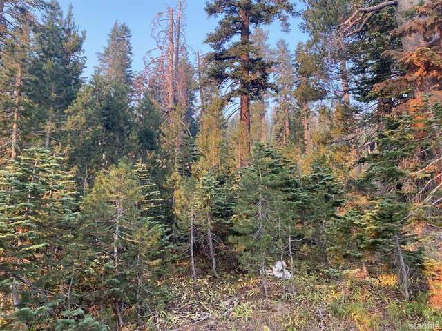 0 Palisades Dr #4 Drive, Kirkwood, CA 95646 (MLS #133275) :: Kirkwood Mountain Realty