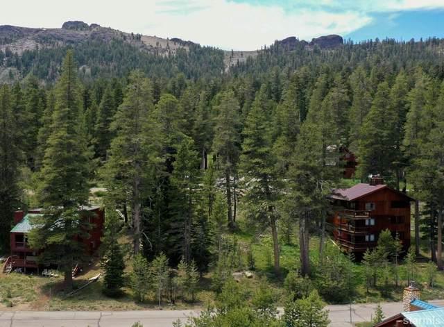 33839 Hawkweed Way #144, Kirkwood, CA 95646 (MLS #134509) :: Kirkwood Mountain Realty