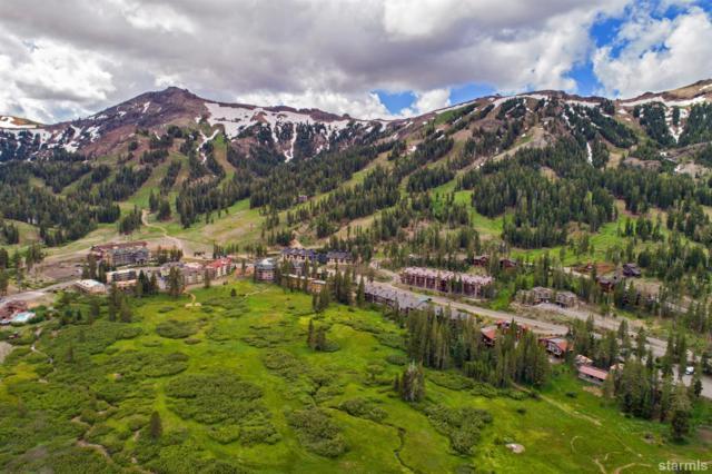 22 Palisades Drive, Kirkwood, CA 95646 (MLS #126956) :: Kirkwood Mountain Realty